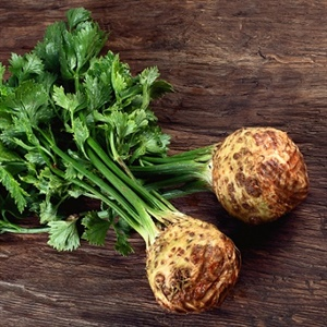 Celery Root: Underrated, Distinctive... Thursday, November 1, 2018